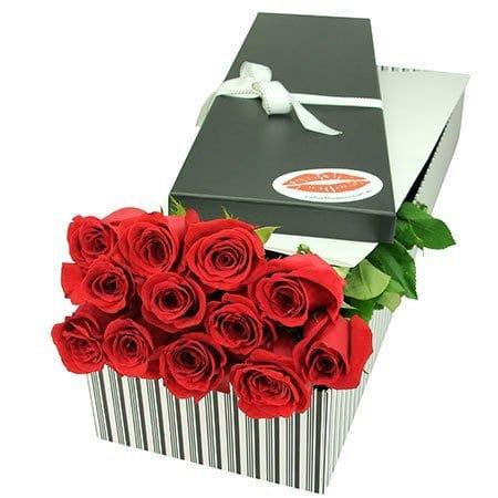 12 Red Roses Delivered in Sydney