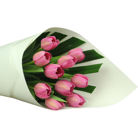 Pretty Pink Tulips (10 Stems)