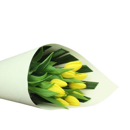 Bright Yellow Tulips (10 Stems)