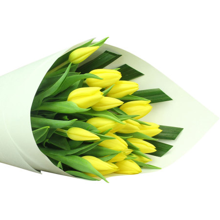 Bright Yellow Tulips (20 Stems)