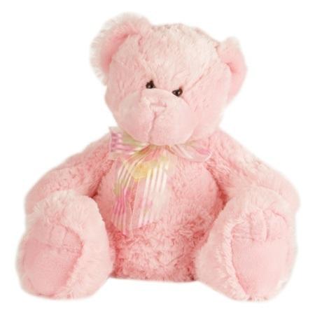 Pink Teddy ( 20cm )
