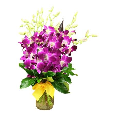 Purple Singapore Orchid Posy