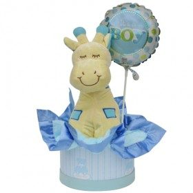 New Baby Boy Gift Hamper Small flowers - florist central coast