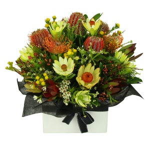 Australian Native Box flowers - florist central coast