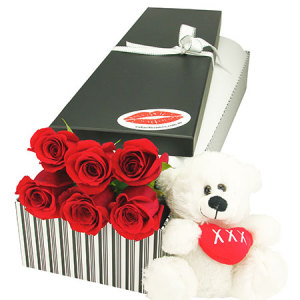 6 Red Roses and Teddy Bear for Valentines Day Delivered in Sydney