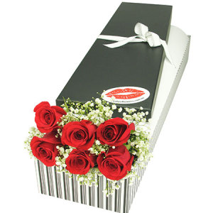 6 Red Roses and Baby`s Breath Valentine`s Day Gift Box Delivered in Sydney