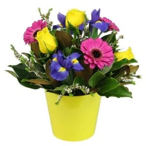 Bright Seasonal Flower Pot