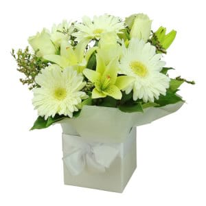 Creamy White Flower Box