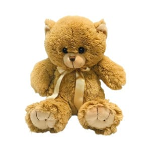 Darling Brown Bear 30cm Delivered Sydney