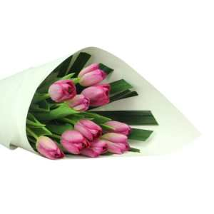 Luscious Purple Tulips (10 Stems)