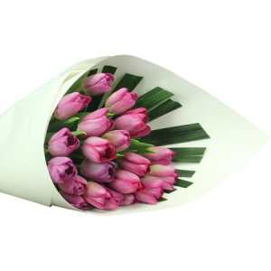 Luscious Purple Tulips (20 Stems)
