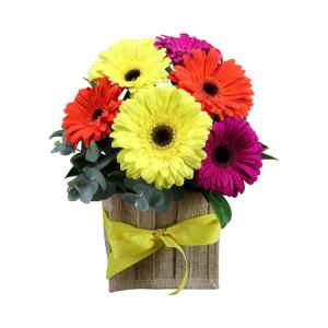 Mixed Gerberas in Hessian Bag
