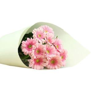 Pink Gerbera Bouquet Delivered Sydney