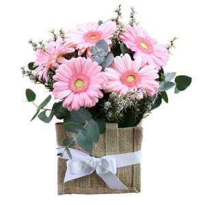 Pink Gerberas in Hessian Bag