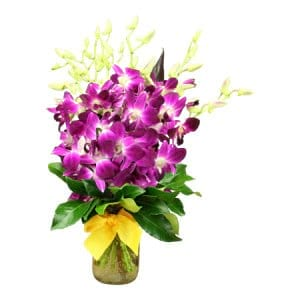 Purple Singapore Orchid Posy