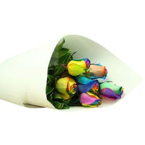 Rainbow Rose Posy Delivered in Sydney